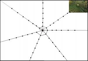 image la toile d'araignée