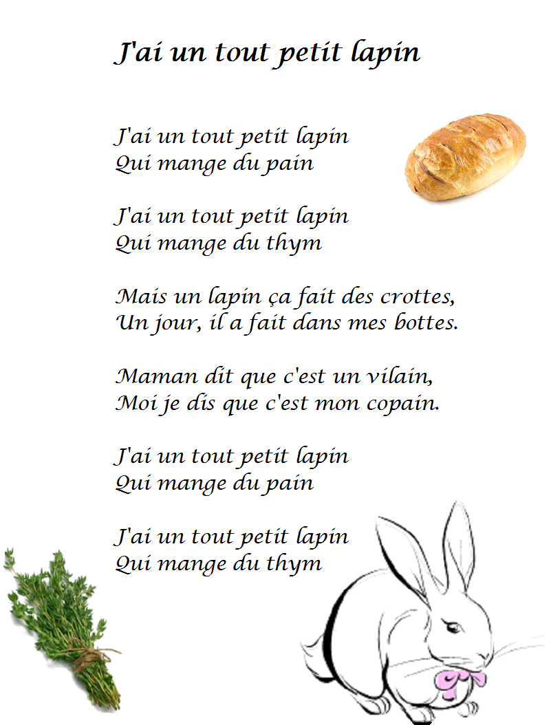 Comptine J Ai Un Tout Petit Lapin Paroles Illustrées J Ai Un Tout