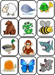 images flashcards animaux