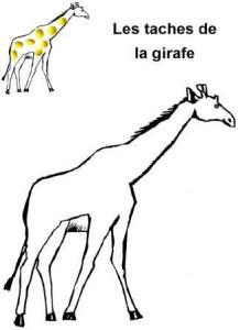 image les taches de la girafe en pâte à modeler
