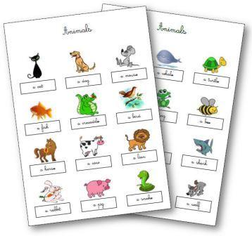 Leçons animaux en anglais
