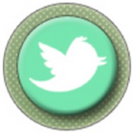 Lien vers mon compte Twitter