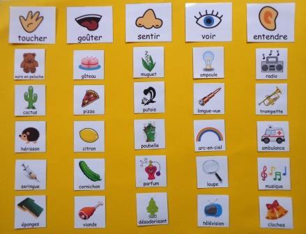 Les 5 sens tableau Classer des images en fonction du sens mis en jeu, 5 sens maternelle