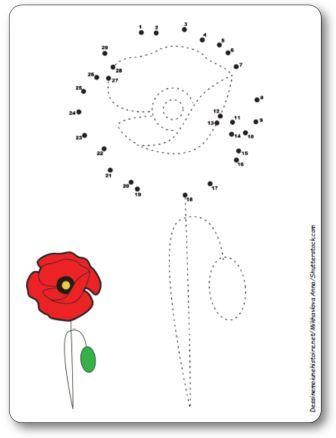 Points à relier fleur coquelicot 1 à 29