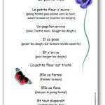 Comptine La petite fleur