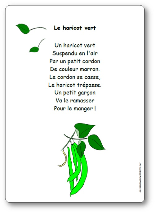 Comptine Le haricot vert