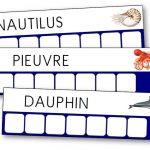 Atelier des mots de la mer