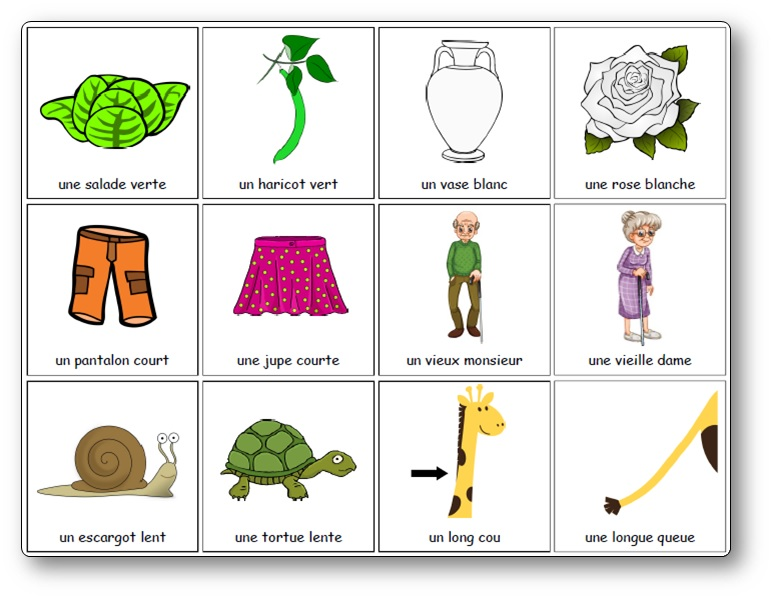 mémory des adjectifs féminins et masculins