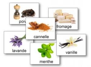 Cartes loto des odeurs