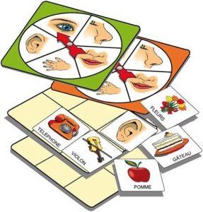 Atelier d'activité basé sur la connaissance des 5 sens