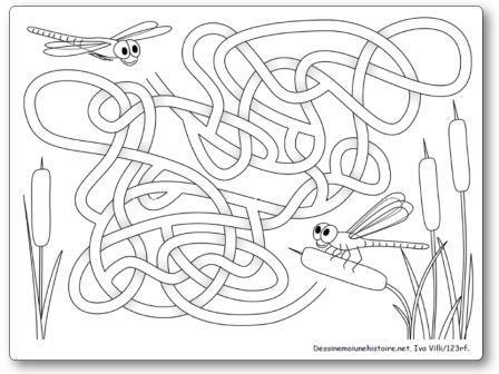 Labyrinthe Libellules