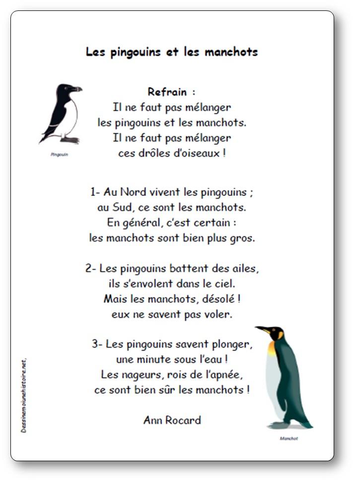 Chanson les pingouins et les manchots d'Ann Rocard, pingouins et manchots
