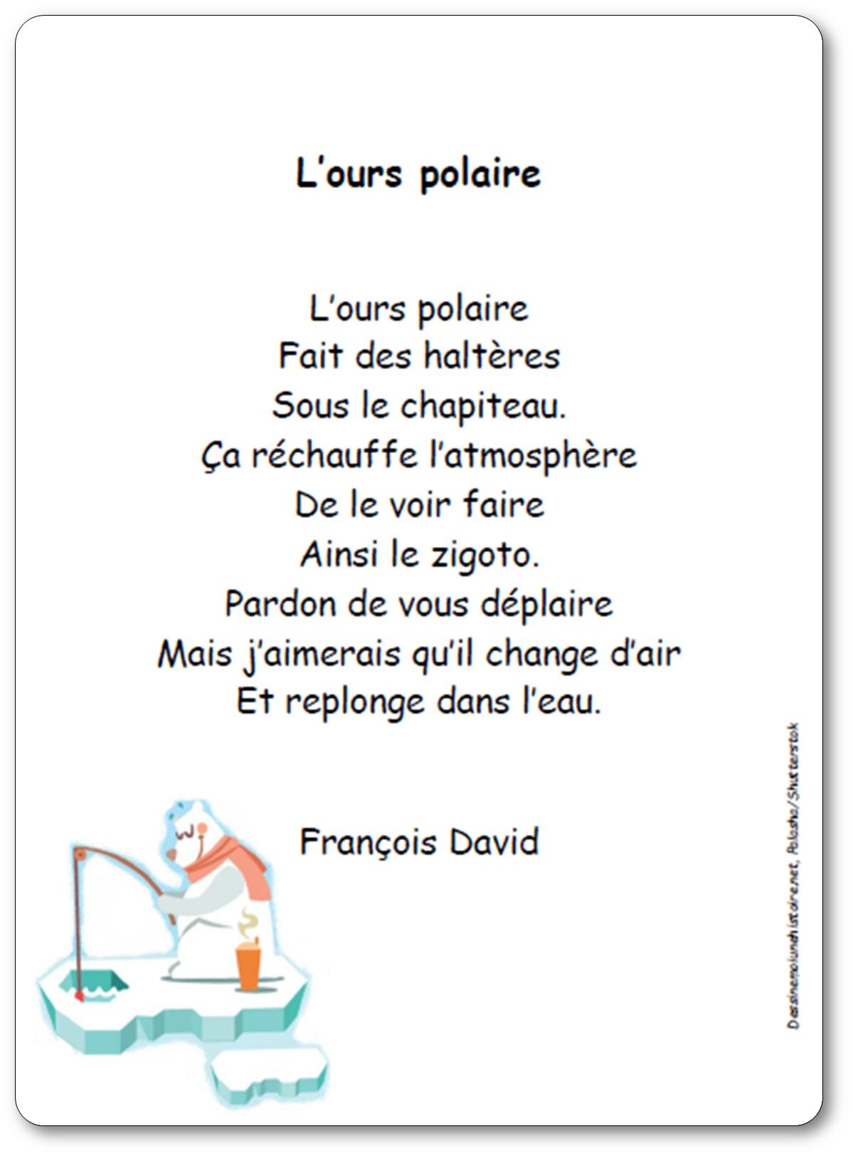 Poésie L'ours polaire de François David, poésie ours polaire