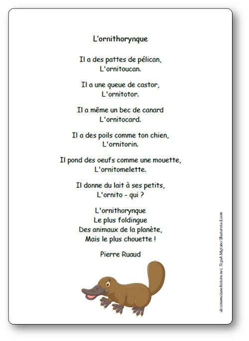 Poésie L'ornithorynque de Pierre Ruaud