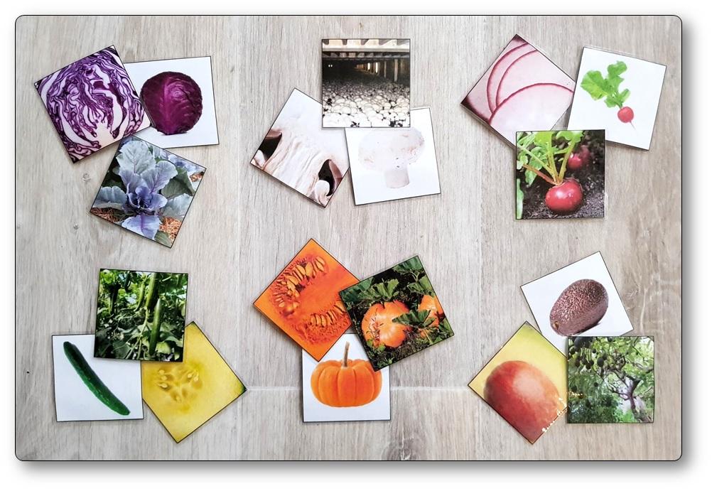 Jeu de mémory des légumes, memory fruits et légumes
