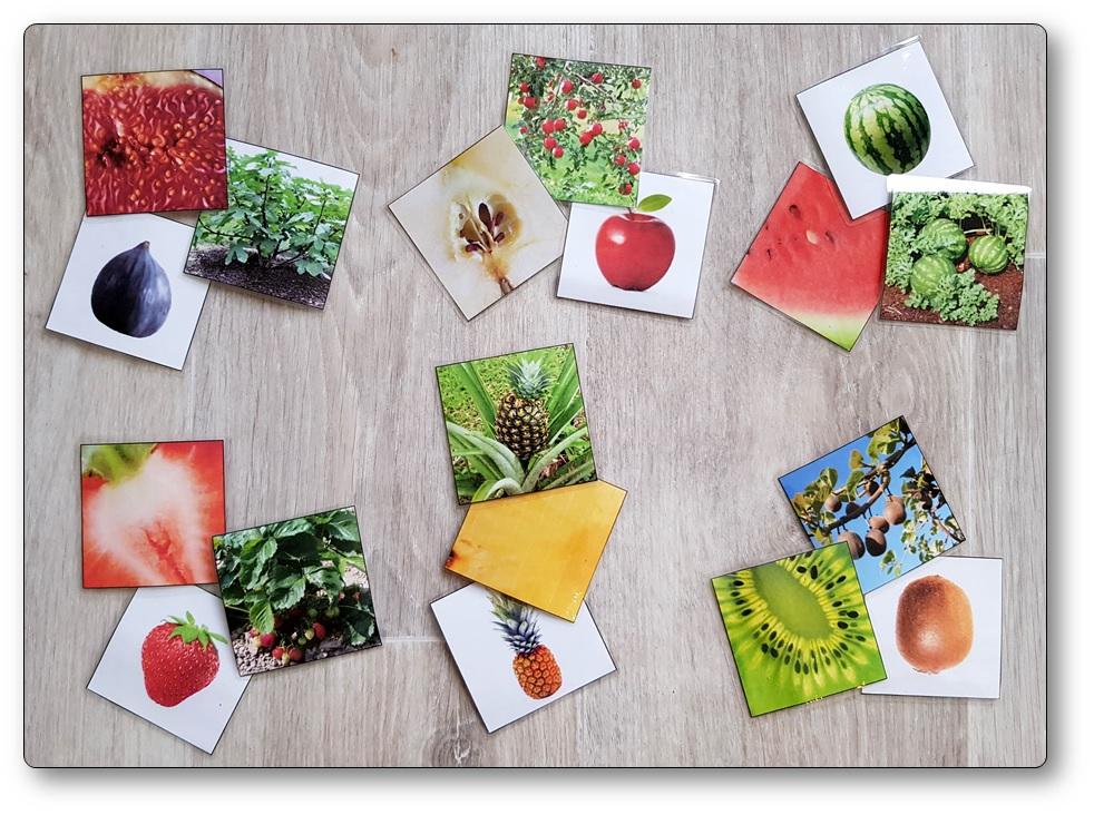Jeu de mémory des fruits, memory fruits et légumes