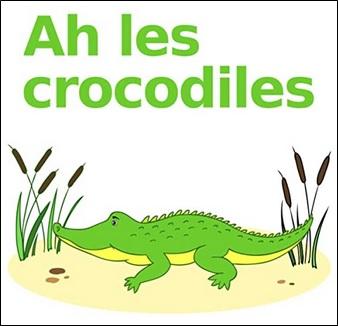 Ah les crocodiles sur les bord du Nil