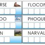 Atelier des mots de la banquise et des animaux polaires