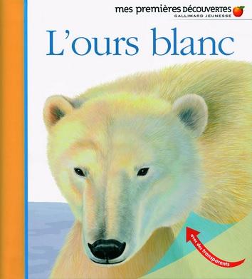Mes premières découvertes : L'ours blanc