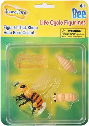 Figurine métamorphose larve abeille