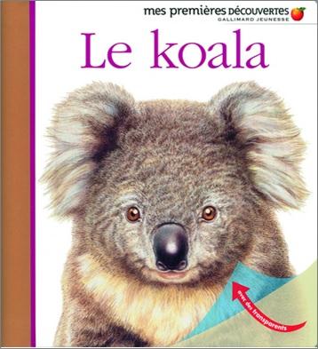 Le koala, Mes premières découvertes