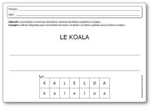Activité sur les koalas : reconstituer un mot avec des étiquettes lettres