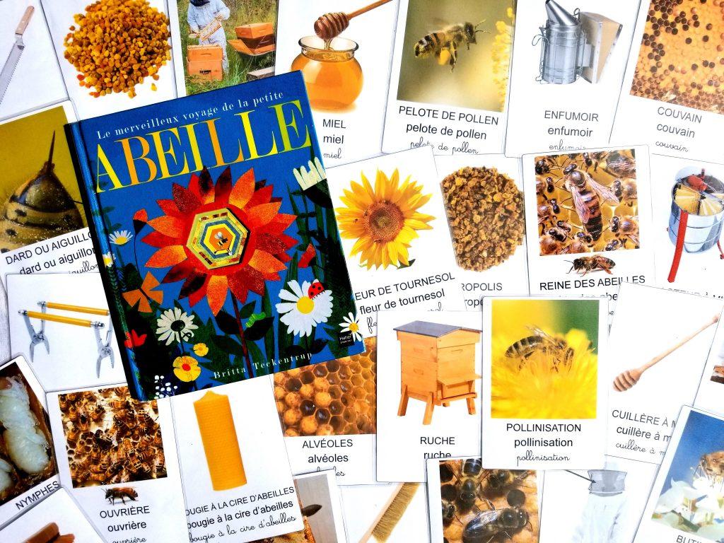 Imagier des abeilles cartes nomenclature, imagier abeilles