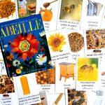 Imagier des abeilles cartes nomenclature