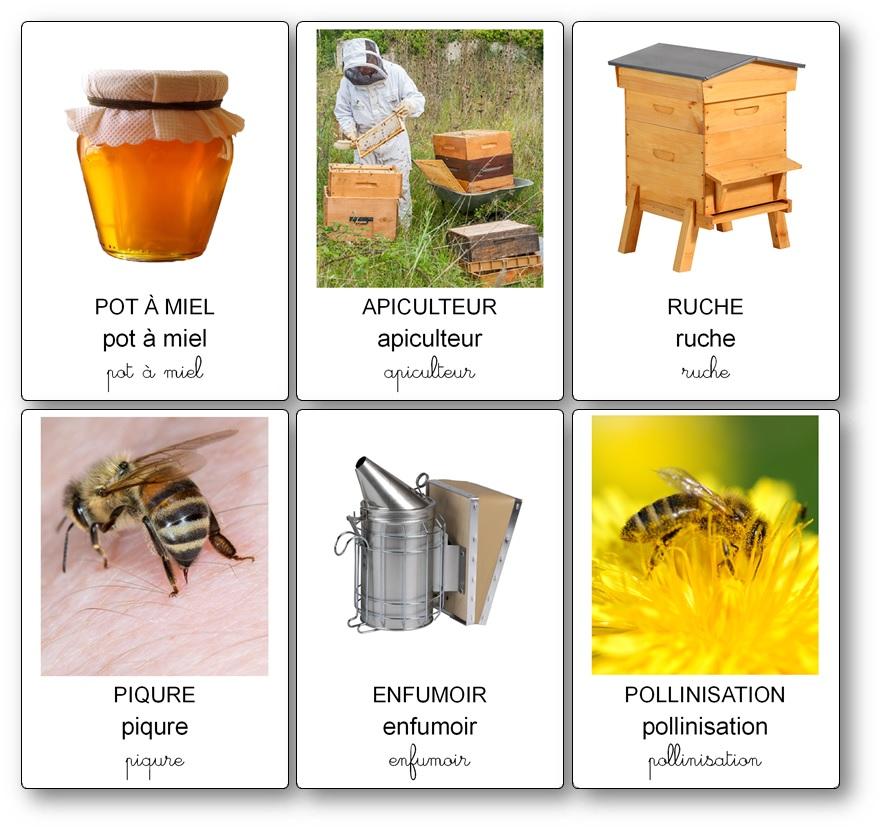 cartes de nomenclature sur les abeilles à imprimer gratuitement PDF, imagier abeilles