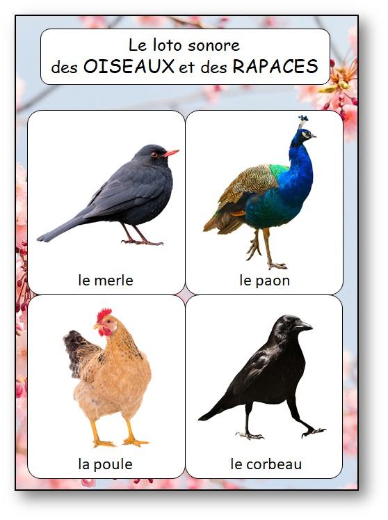 Loto cris oiseaux rapaces, jeu reconnaitre les chants oiseaux